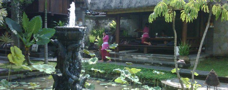 Makanan Khas Bali- Bebek Bengil
