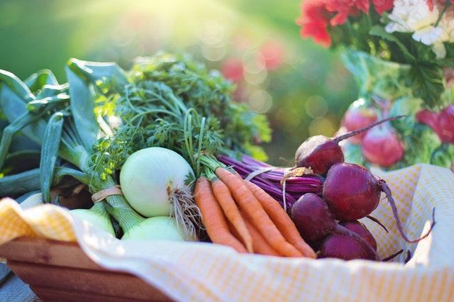 Supaya Sehat Yuk Makan 15 Makanan Berserat Tinggi Ini Cashbac Com