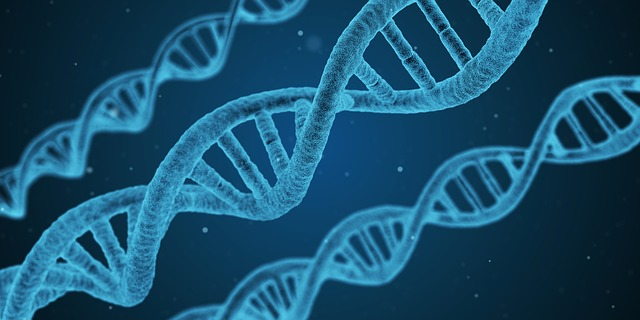 Olahraga untuk Meninggikan Badan - Faktor Genetik