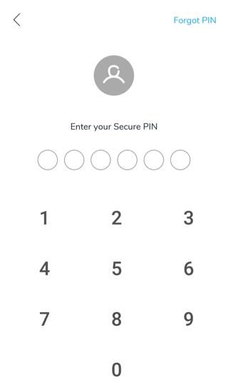 input pin pay cashbac
