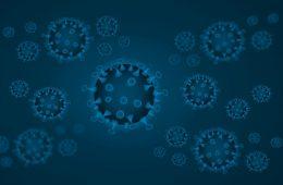 virus corona and coronavirus