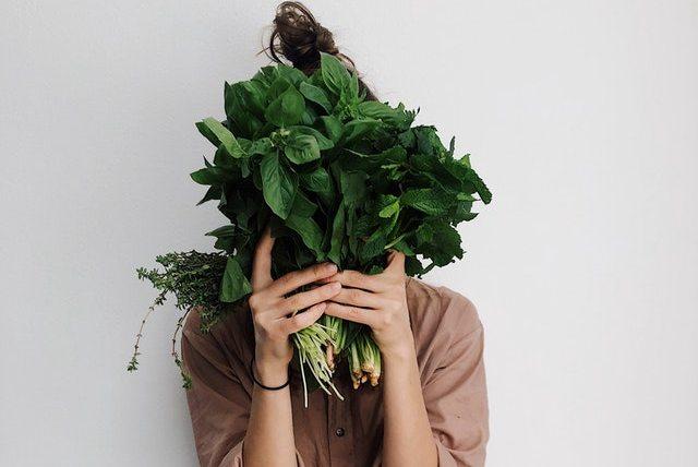 memetik tanaman sayuran